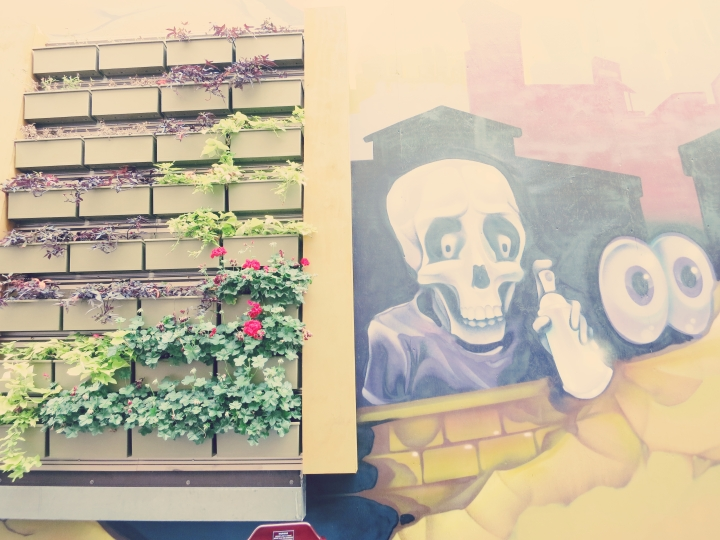 interesting murals and art decor~