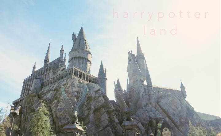 The Wizarding World of Harry Potter | 4 Years